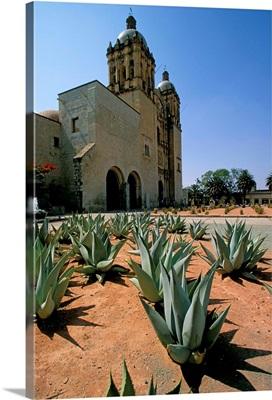 Oaxaca, Mexico, North America