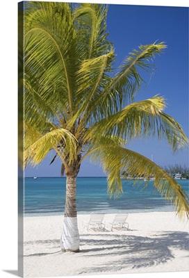 Ocho Rios, Jamaica, West Indies, Caribbean, Central America