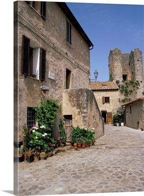 Old house with pots of flowers in the Largo di Fontebranda, Siena, Tuscany, Italy