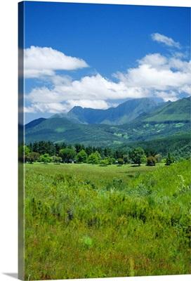 Outeniqua Mountains, Garden Route, South Africa