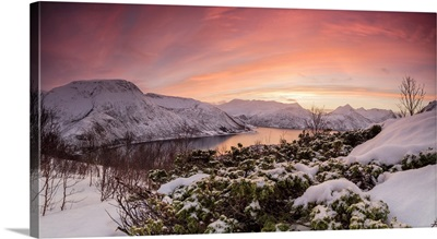 Panorama Of Frozen Sea, Torsken, Senja, Troms County, Norway