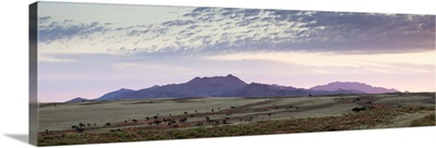 Panoramic view over the landscape of the Namib Rand game reserve, Namibia, Africa