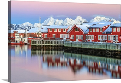 Pink Sunset Over Red Houses, Svolvaer, Lofoten Islands, Norway