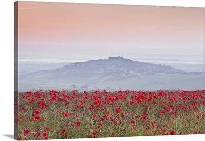 Poppies above the village of Sancerre in the Loire Valley, Cher, Centre, France