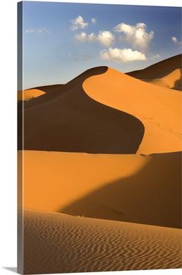 Rolling orange sand dunes and sand ripples, Erg Chebbi sand sea, Morocco