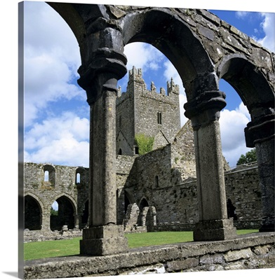 Ruins of Cistercian Jerpoint Abbey, Jerpoint, Leinster, Republic of Ireland