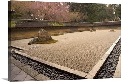 Ryoanji temple, dry stone garden and blossom, Kyoto city, Honshu island, Japan