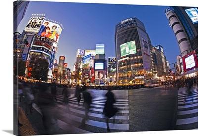 Shibuya Crossing, Tokyo, Honshu, Japan