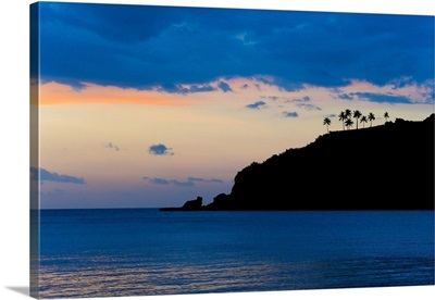Silhouette of palm trees on a cliff at sunset, Nippah Beach, Lombok, Indonesia