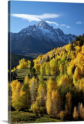 Sneffels Range with fall colors, Uncompahgre National Forest, Colorado