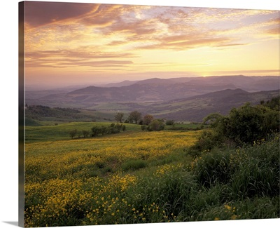 Sunset over Val d'Orcia, near Castiglione d'Orcia, Tuscany, Italy