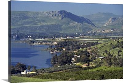 Tabgha, Sea of Galilee, Israel, Middle East