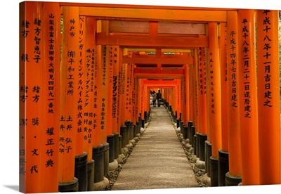 The Endless Red Gates of Kyoto's Fushimi Inari Shrine, Kyoto, Japan