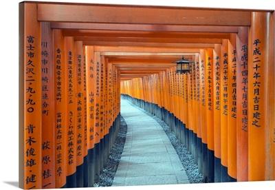 Torii Gate At Fushimi Inari Jinja, Shinto Shrine, Kyoto, Honshu, Japan