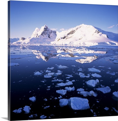West coast, Antarctica