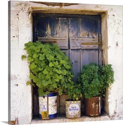 Windowsill, Paleohora, Crete, Greece, Europe