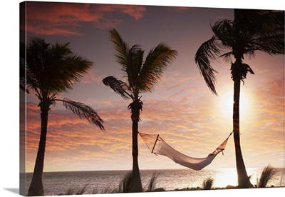 Woman In A Hammock On The Beach, Florida
