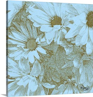 Daisy Sketch II