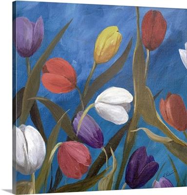 Tulips One