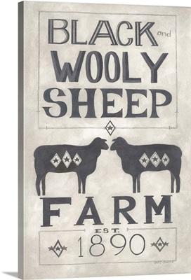 Black Wooly Sheep
