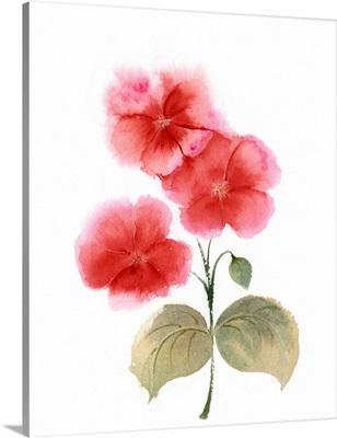 Red Flowers II