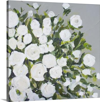 Rose Bush On Grey