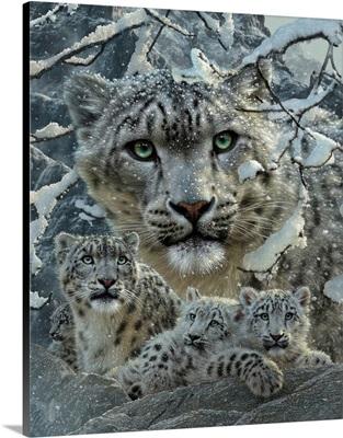 Snow Leopard Collage