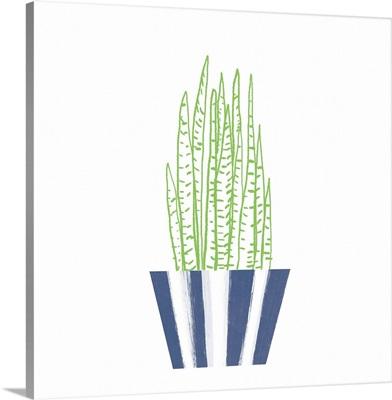 Striped Pot III