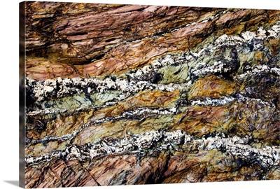Coloured coastal rock