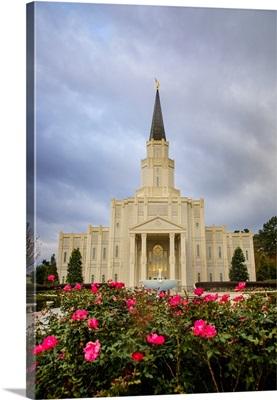 Houston Texas Temple, Roses, Spring, Texas