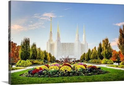Washington DC Temple with Flowers, South Kensington, Maryland