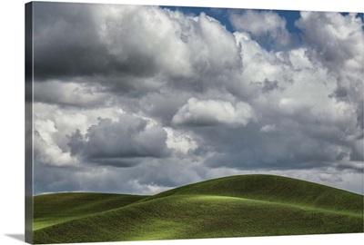 Beautiful clouds over the green wheatfields of the Palouse, Washington