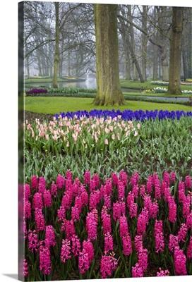 Beautiful gardens of Keukenhof, Amsterdam, Holland