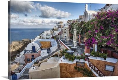 Bouganvillea and cafes on Oia, Santorini, Greece
