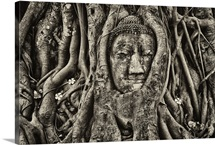 Buddha Head in Tree Roots, Wat Mahathat, Ayutthaya, Thailand