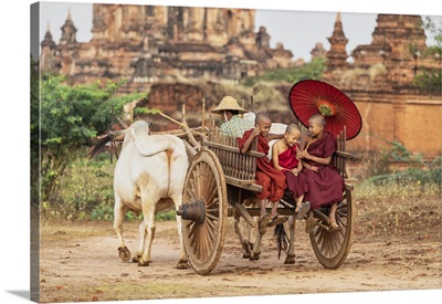 Burmese Monks On An Oxcart In Bagan, Myanmar