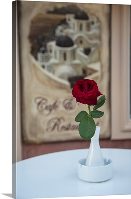 Cafe with red rose in Oia, Santorini, Greece