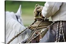 cowboy on horseback, holding the reins