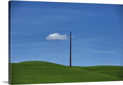 Electric lines in the Palouse region of Washington State