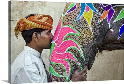 Indian Elephant with trainer, Jaipur, India