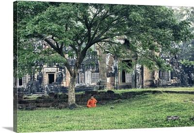 Monk meditating under tree, Angkor Wat, Cambodia