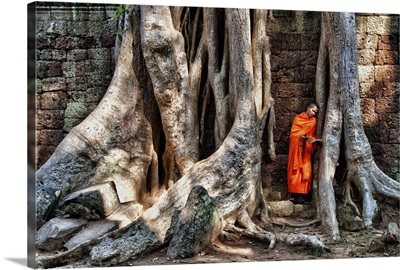Monk reading in Ta Prohm temple in Angkor Wat, Cambodia