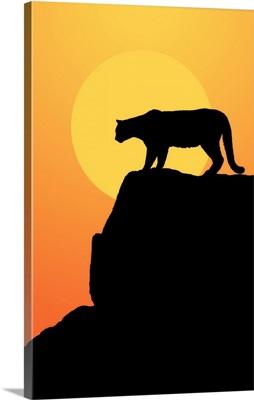 Mountain Lion at sunset on the rocks, Yosemite, California