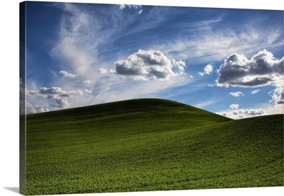 Powerful clouds and green wheat fields in the Palouse