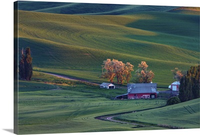 Rolling hills and barns in the Palouse region of Washington State