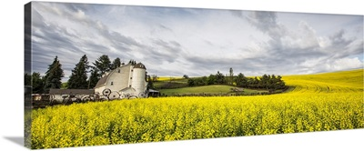 The Dahmen Barn and yellow Cannola Fields in the Palouse, WA