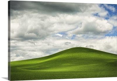 The Rolling Wheat Fields In The Palouse, Washington