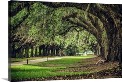 Woman leaning against a huge Oak tree at Boone Plantation