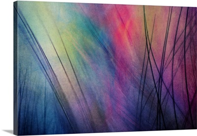 Tropical feather Abstract