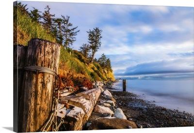 A Rustic Jumbled Beach Scene On Whidbey Island, Washington